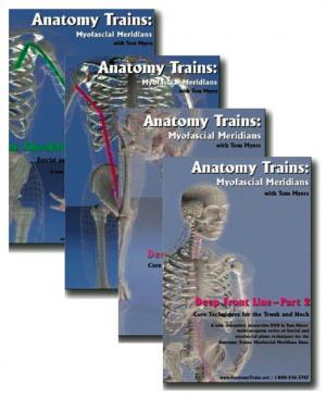 set 2 of 4 technique dvds