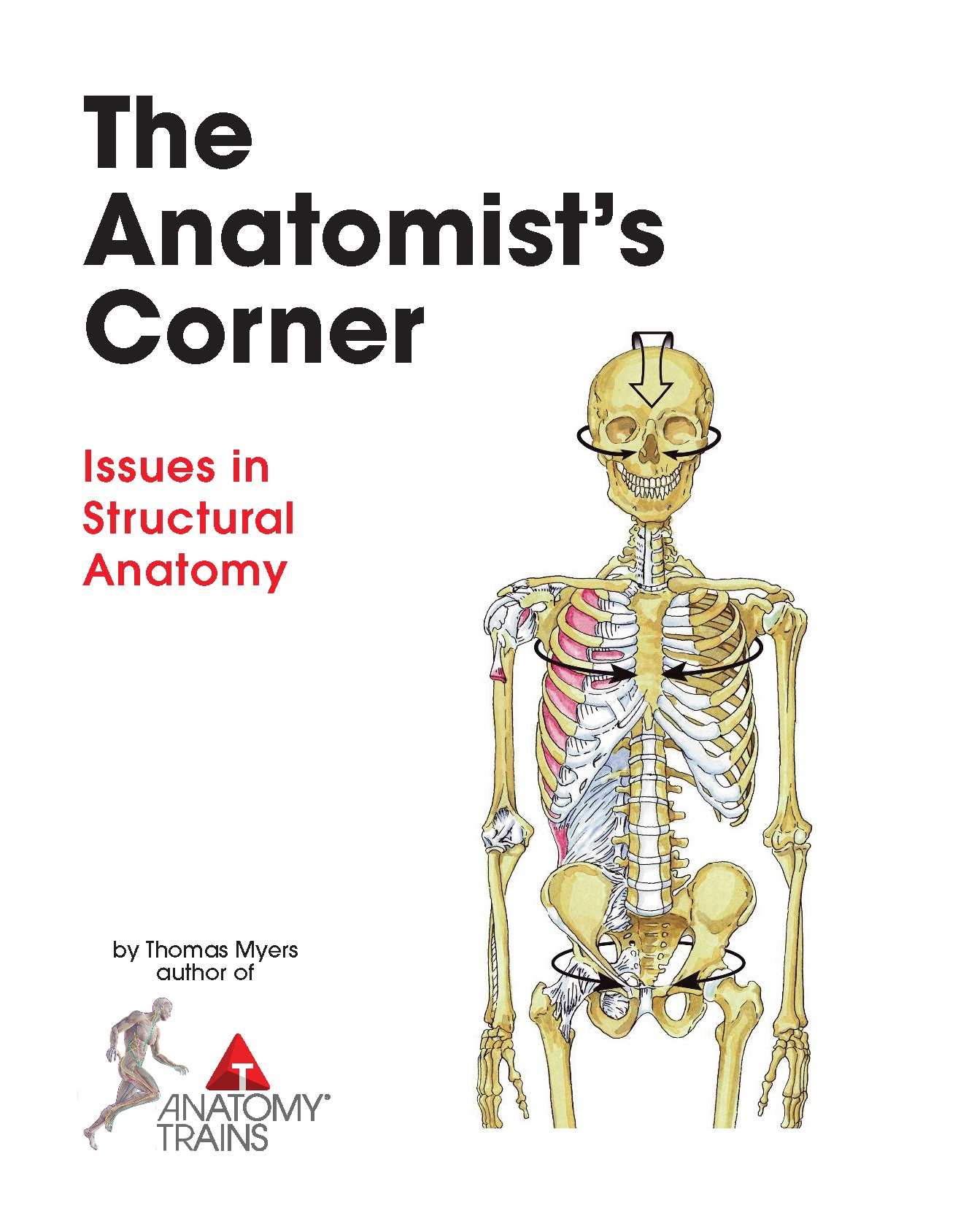 Anatomy Trains 3rd Edition Book Posters Thomas W Myers