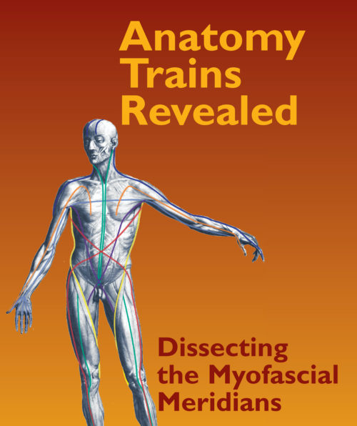 Anatomy Trains Revealed: Dissecting the Myofascial Meridians