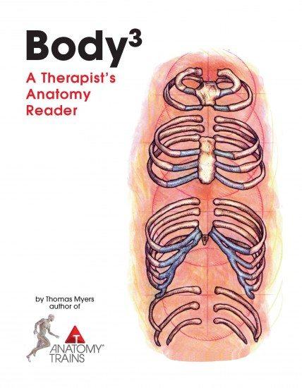 Body3 A Therapist's Anatomy Reader