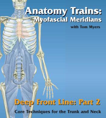 Technique Series: Deep Front Line – Part 2
