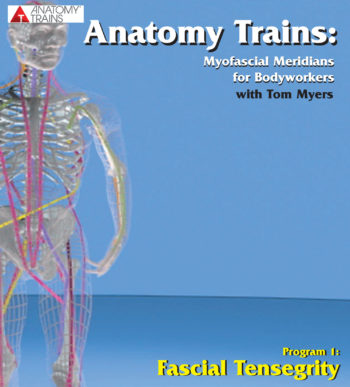 Anatomy Trains: Fascial Tensegrity