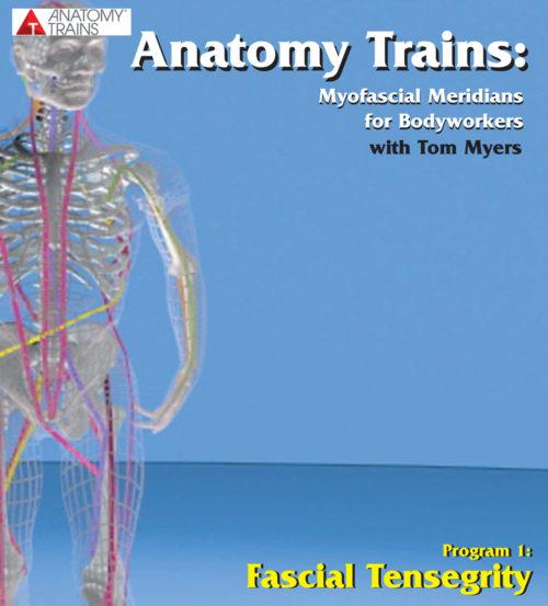 Anatomy Trains: Fascial Tensegrity