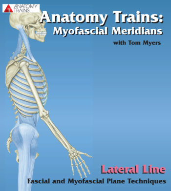 Technique Series: Lateral Line