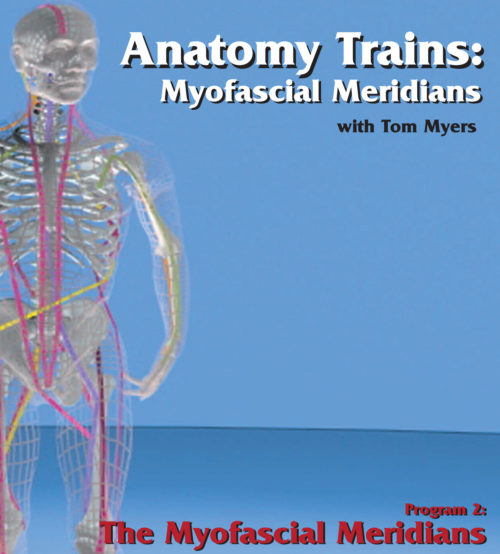 Anatomy Trains: Myofascial Meridians