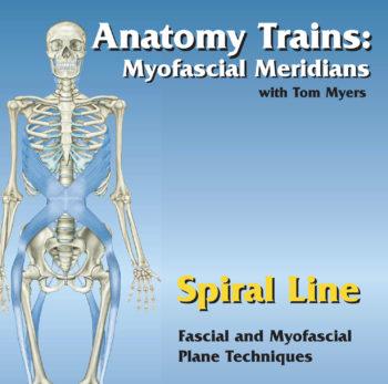 Technique Series: Spiral Line