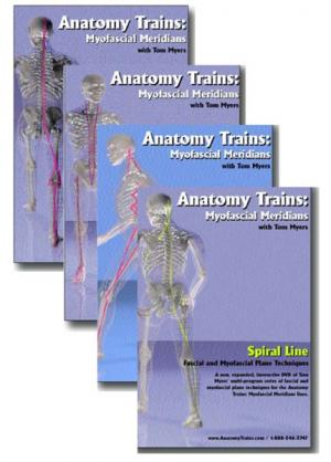 Anatomy Trains Dvds Fascia Training For Health Professionals