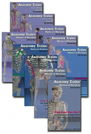 full technique series from anatomy trains - set of 10 dvds