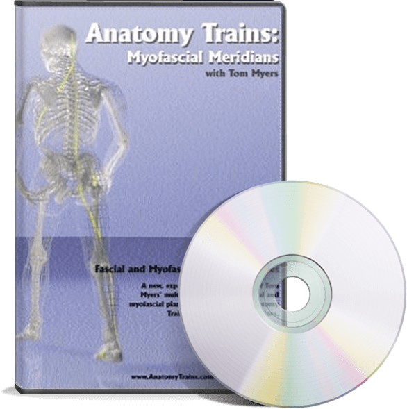 Anatomy Trains Myofascial Meridians Dvd