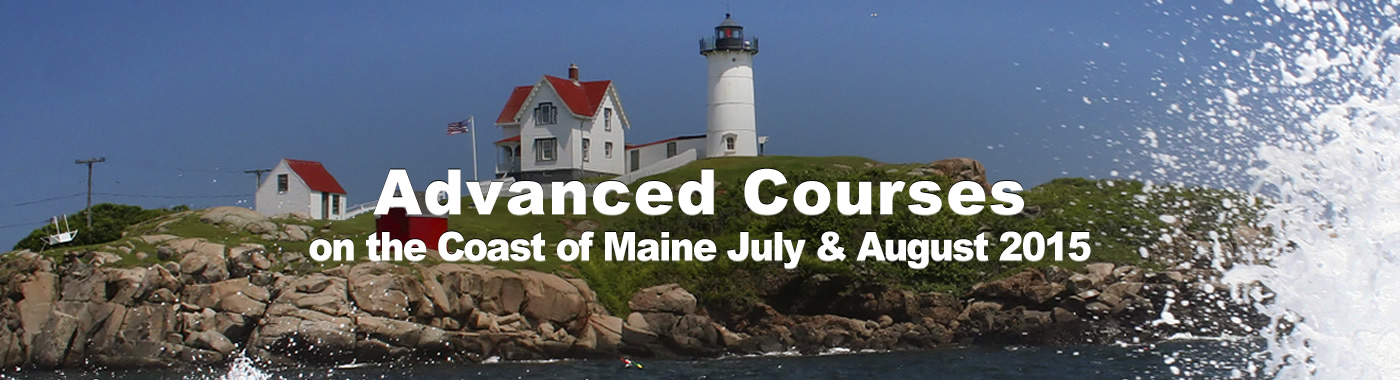 Advanced Courses - Summer 2015