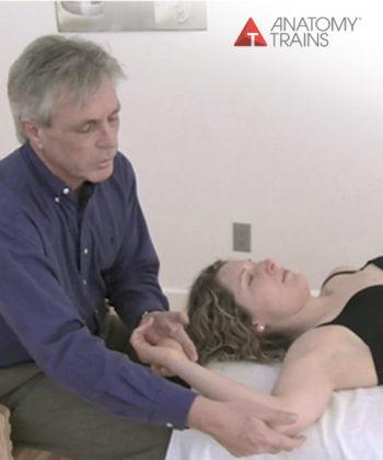 Fascia and the Anatomy Trains Webinar