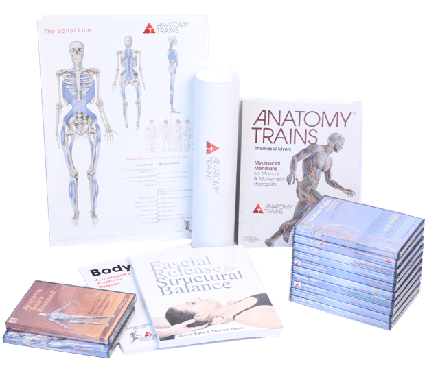 Atsi Courses Anatomy Trains Si Certification Program