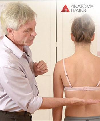 BodyReading: Visual Assessment of the Anatomy Trains Webinar Series