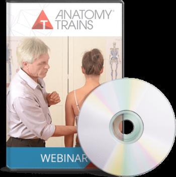 BodyReading: Visual Assessment of the Anatomy Trains Webinar Series & BodyReading DVD