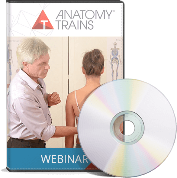 Bodyreading Webinar Series Dvd Package Anatomy Trains