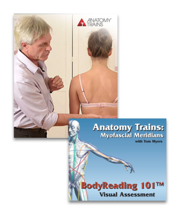 BodyReading: Visual Assessment of the Anatomy Trains Webinar Series & BodyReading 101