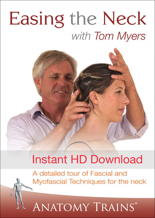 Easing the Neck with Tom Myers Instant HD Download