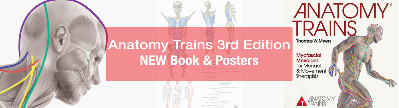 Anatomy Trains 3rd Edition - New Book and Posters