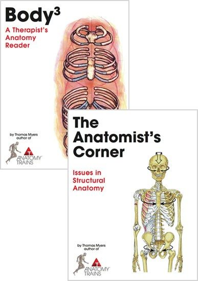 Body3 and The Anatomist's Corner