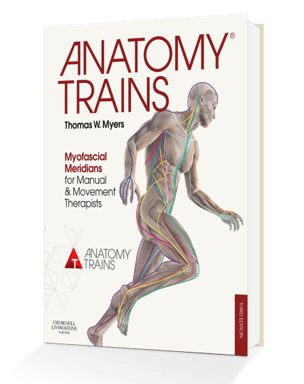 Anatomy Trains 3rd Edition Book By Thomas W Myers