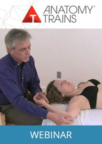 Fascia in Anatomy Trains Webinar