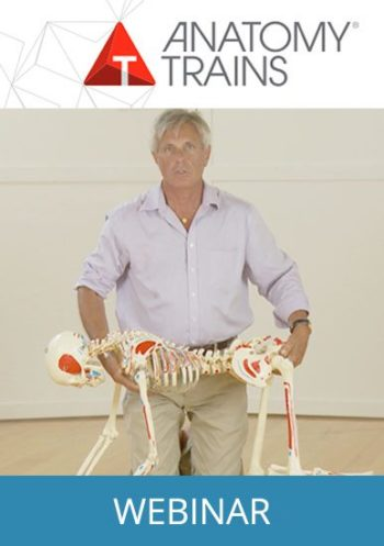 unfolding evolution webinar for bodyworkers and manual therapists