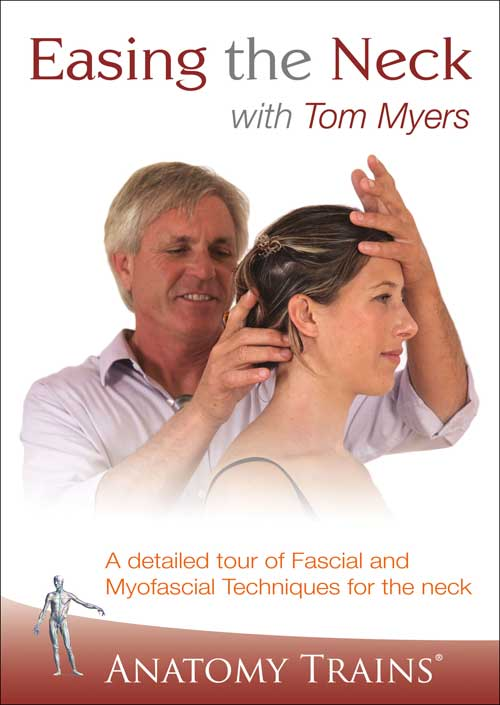 Easing the Neck with Tom Myers