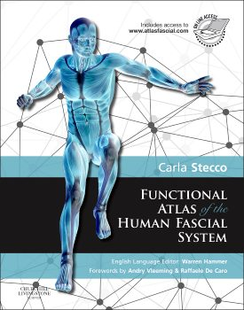 carla steccos functional atlas of the human fascial system