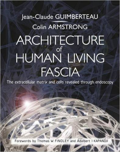 Architecture of Human Living Fascia by Dr. Guimberteau