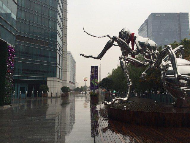 shanghai wasp