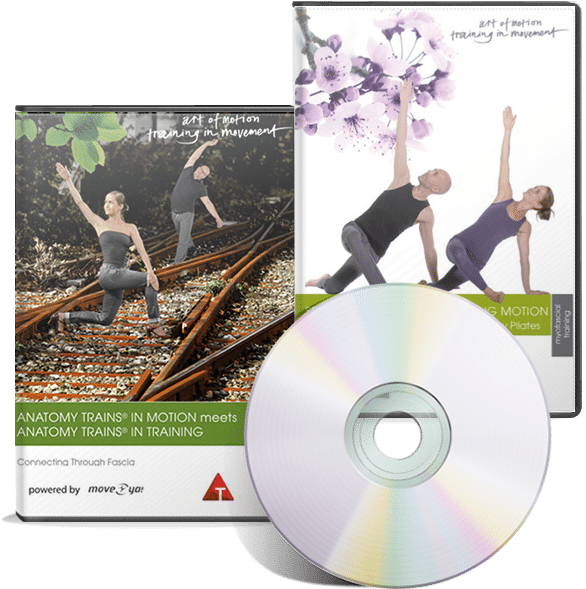 Slings in Motion DVD Bundle - Karin Gurtner