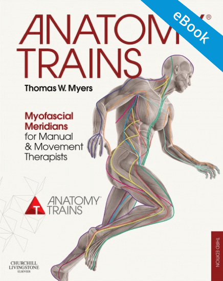 Anatomy Trains Ebook 3rd Edition Myofascial Manual