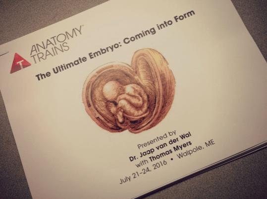 ultimateembryo1