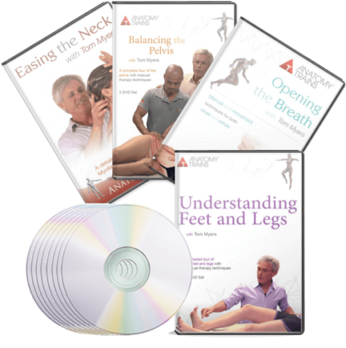 Regional Technique Bundle DVDs