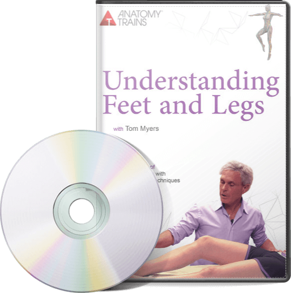 Understanding Feet and Legs DVD