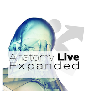 Anatomy Live Expanded 2018