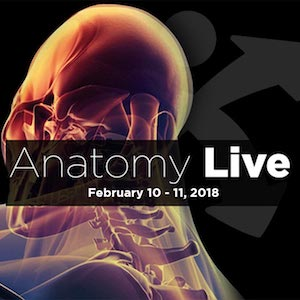 Anatomy Live 2018