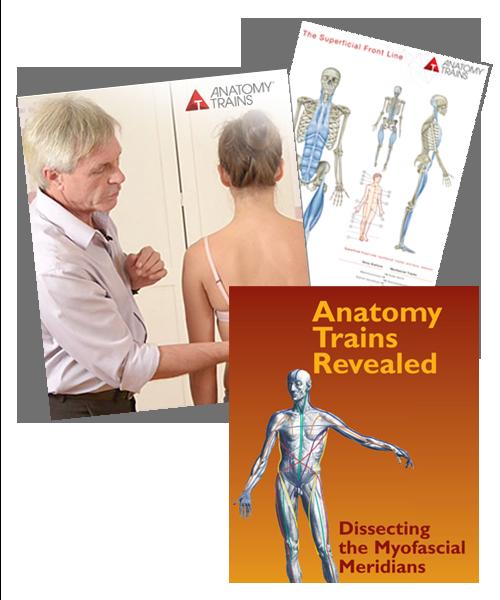 Anatomy Trains Dissection Bundle