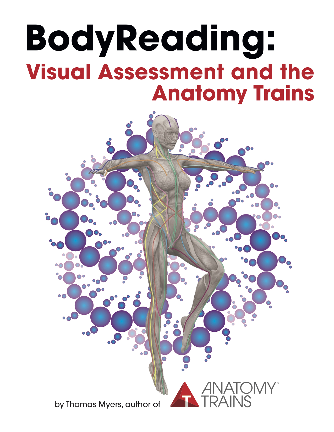 Bodyreading Visual Assessment And The Anatomy Trains By Tom Myers