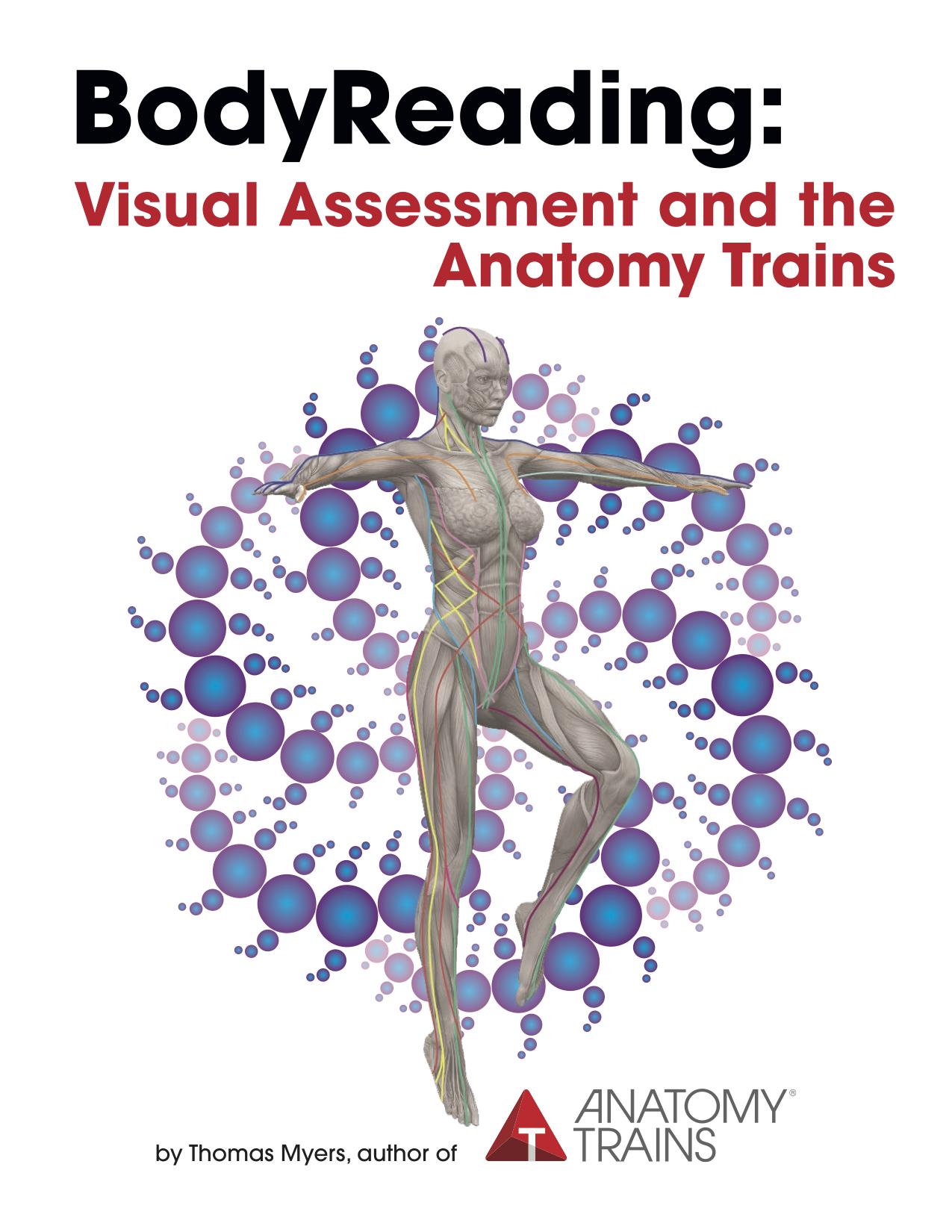 Anatomy trains thomas myers