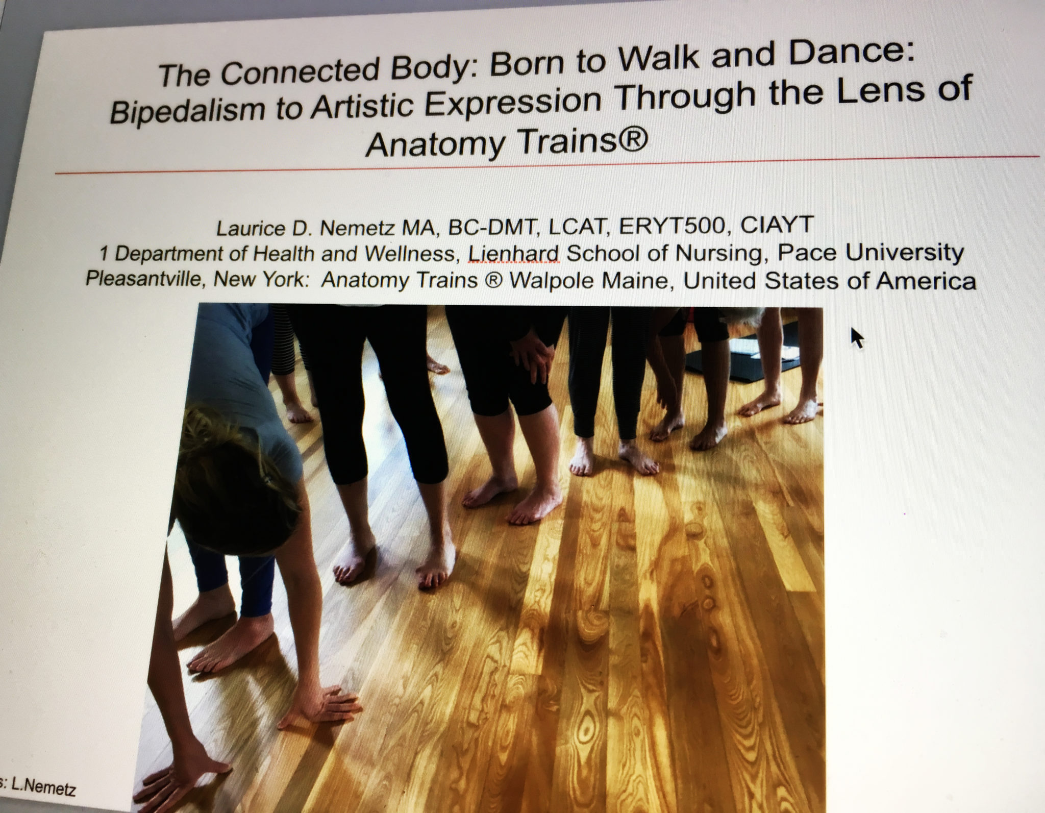 Anatomy Trains Staff At International Movement Conference 2018