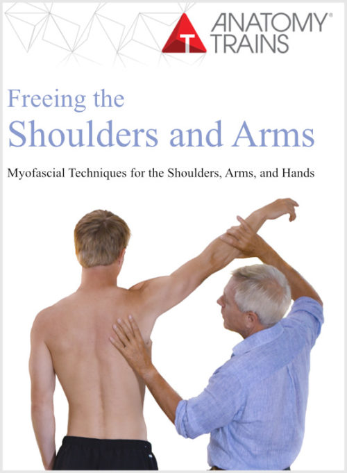 Freeing the Shoulders and Arms